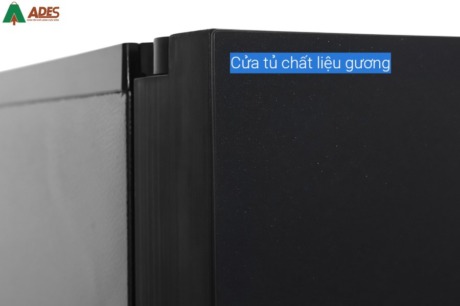 Tu Lanh Panasonic NR DZ601VGKV chat lieu guong